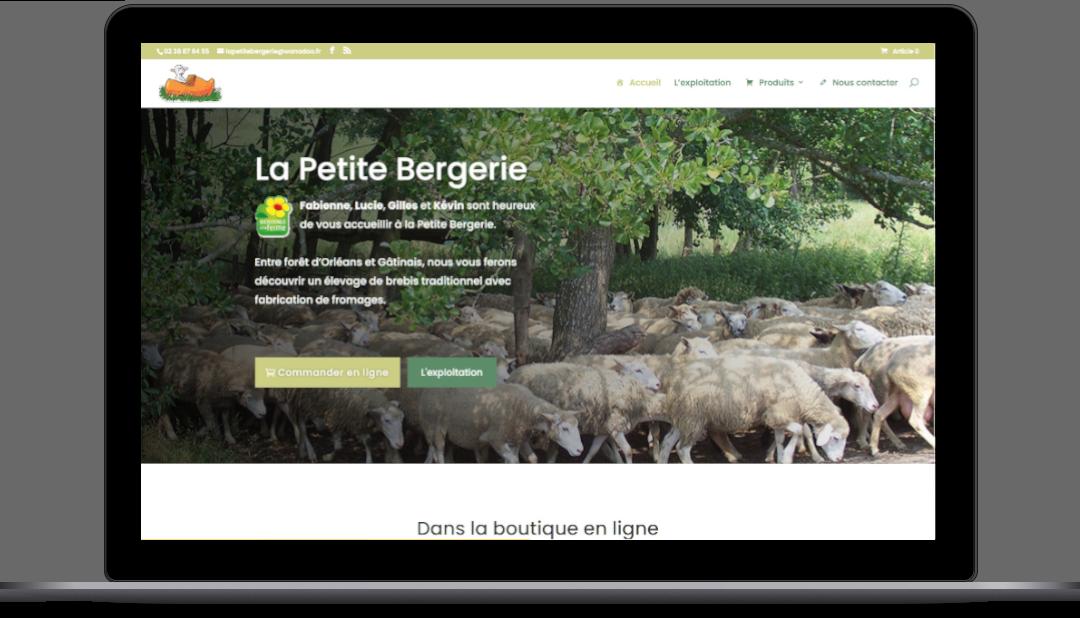 site internet petit bergerie